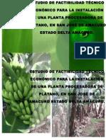 Planta Procesadora de Platano