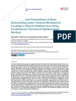 Remodeling under Natural Mechanical Loading or Muscle Malfunction Using Evolutionary Structural Optimization Method