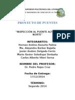 Reporte Final Proyecto Puentes Primer Parcial (PAN)