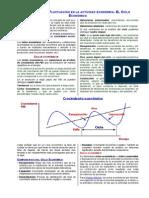 Crecimiento y Fluctuacion en La Actividad Economica Mini