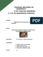 PLANTACIONES DE TAYA EN MAGDALENA.docx