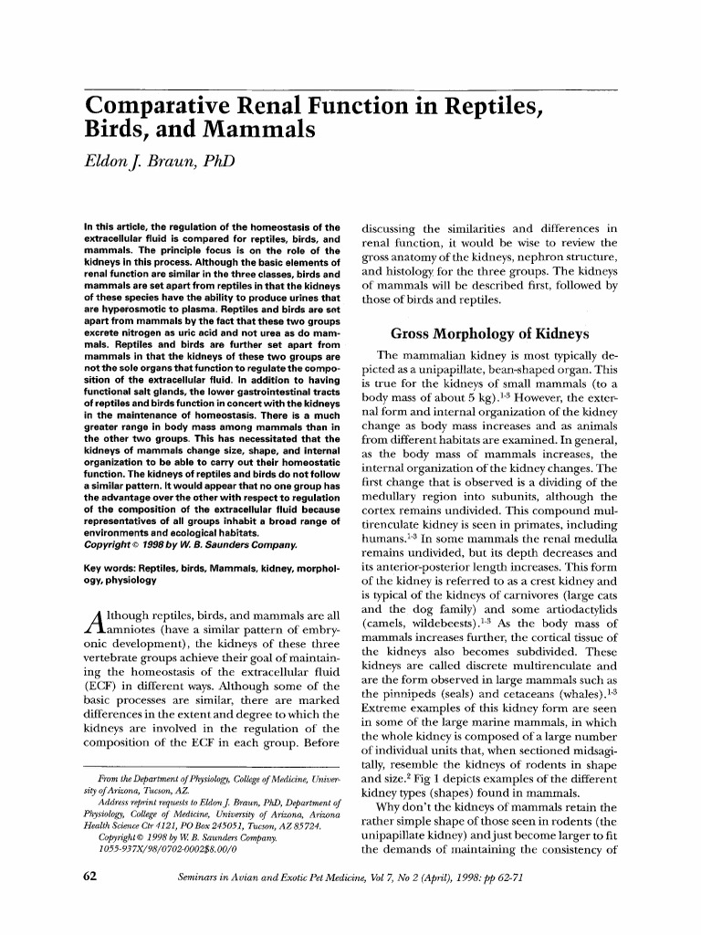 Comparative Renal Function in Reptiles, Birds, And Mammals   Kidney ...