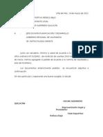 Carta Al Gobierno Regional