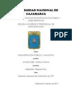 Artículos acerca del SNC en la CPP