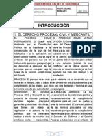 Apuntes de Derecho Procesal Civil y Mercantil Hlmd