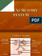 Intervensi Excretory System