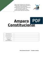 159897893 Amparo Constitucional