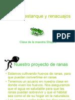 Presentación multimedia Proyecto Agua de estanque y renacuajos