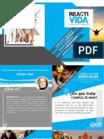 Brochure Recreavida Online