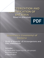 Characterisation of Bacteria