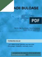 200915028-11-maladii-buloase