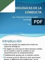 Curso PSYC 123- Base Biologica y Metodo Cientifico