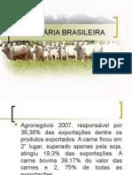 A Pecuária Brasileira