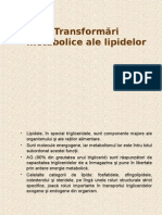 Transformări Metabolice Ale Lipidelor