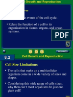 celldivisiontextdraft2