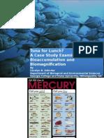 tuna for lunch methylmercury