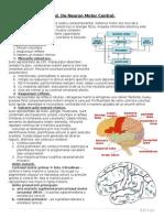 An III - Neuro - C2 - Sindromul de Neuron Motor Central