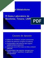 Dysoxie et métabolisme.pdf