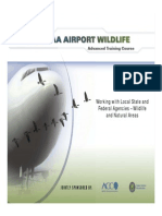 ACC/FAA Airport Wildlife - History of JFK Wildlife Mgt