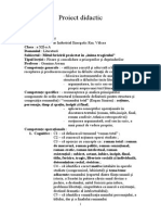 Proiect Didactic 3