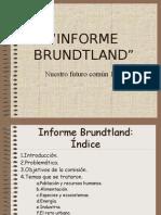 INFORME BRUNDTLAND