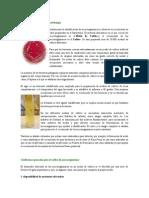 Los Medios de Cultivo en Microbiología HEYDII
