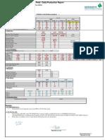Disouq PD report E GAS 18-8-2014.pdf