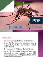 Dengue Zai IM
