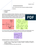 20. Metab. de Nucleotidos