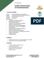 Segunda Especialidad en PSICOPEDAGOGÍA_2014