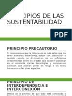 Principios de Las Sustentabilidad