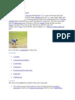 Alkali Soils