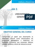 Presentación Cultura y Diversidad Sesión 1