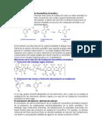 Reacción de Sustitución Nucleofílica Aromática DE PRACTICA DE LABORATORIO