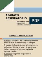 CLASE.APARATO RESPIRATORIO. (2) (1)