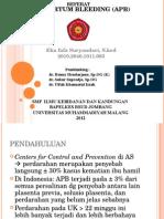 Referat APB