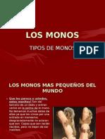 Tipos de Monos