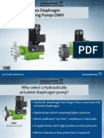 DMH pumps