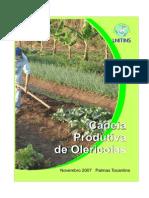 Olericultura - Cadeias Produtivas