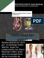 HELICOBACTER PYLORI  microbiologiA
