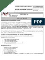 Formato Necesidades Del Area de Artistica Marzo de 2014 - 2015