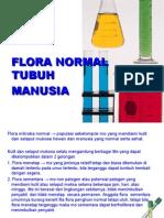 Mikro Flora Normal Tubuh