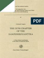 The IXth Chapter of the Samadhirajasutra