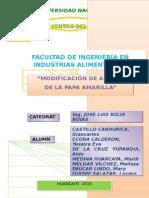 INFORME DE ALMIDONES.docx