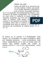 bioquimica.pptx