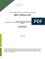 Informe CC Rio Cebollati Sintesis