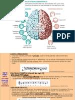 Epocas historicas_caract generales [pdi].pdf