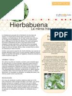 Aromaticas 06 Hierbabuena.pdf