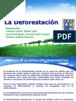 Presentacion La Deforestacion