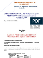 Exposicion de Trucha
